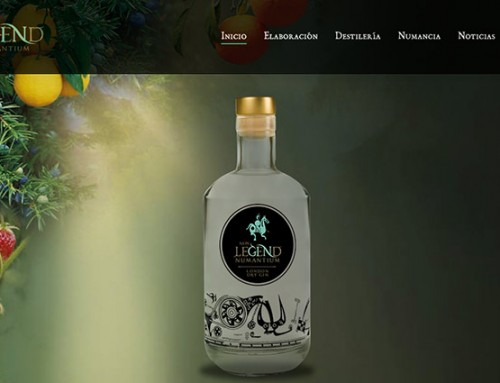 Diseño de página web para Ginebra
